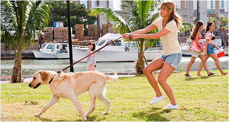 Marley & Me: Two-Disc Bad Dog Edition DVD Review