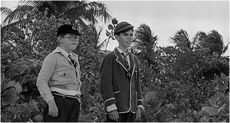 Lord of the Flies: Criterion Collection DVD Review